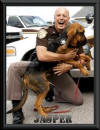 working bloodhound puppies for sale SAR search and rescue law enforcement